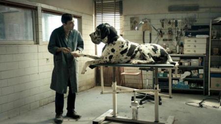 Dogman-